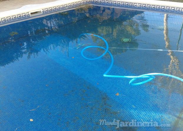 Im genes de jardines y piscinas diego ferrabelo for Guia mantenimiento piscinas