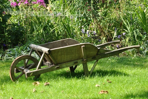 ¿Cómo crear un jardín pequeño y económico?
