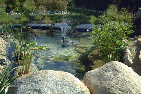 C mo crear un estanque en el jard n for Como mantener un estanque limpio