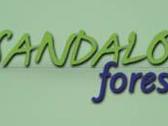 Servicios jardiner a sabadell for Jardineria sabadell