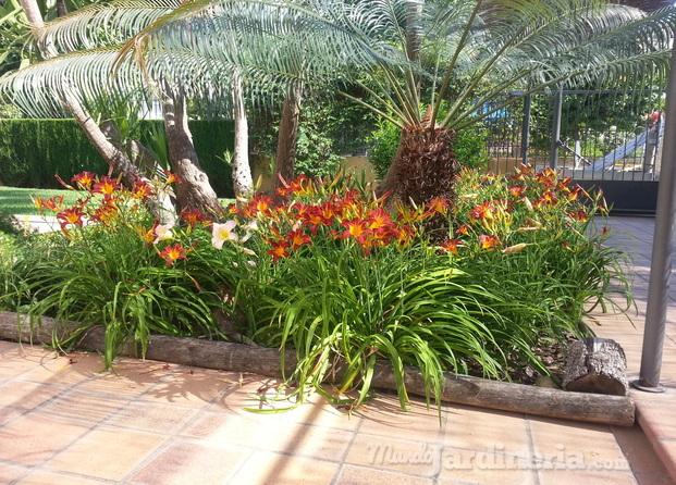 Im genes de jardineros en sevilla jardines del sur for Jardines particulares