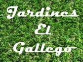 Jardines el gallego for Jardineria las rozas