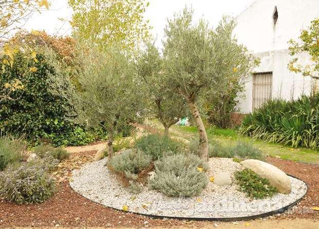 Im genes de serbal paisajismo y jardineria for Imagenes de jardineria gratis