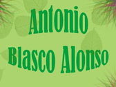 Antonio Blasco Alonso
