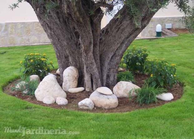 Mantenimiento jardines j vea x bia for Jardin iwaki