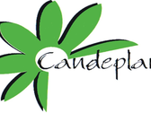Candeplant