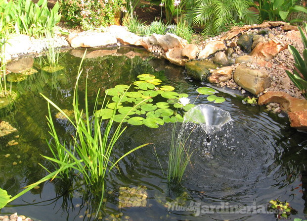Sein jardines for Construccion de estanques