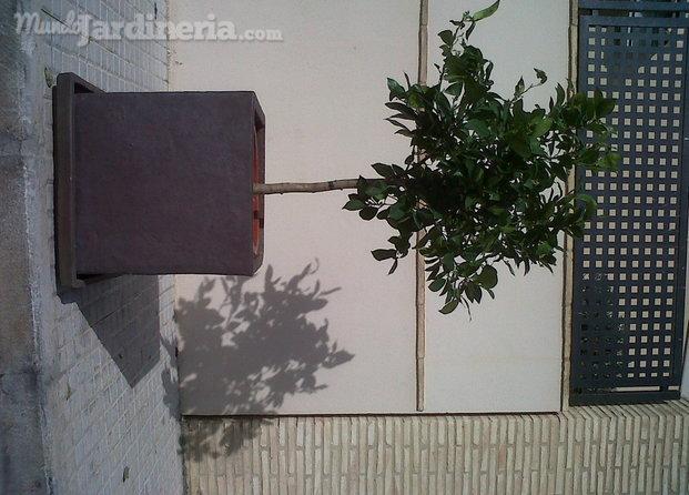 Jardiner a valencia - Empresas jardineria valencia ...