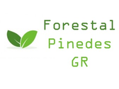 Forestal Pinedes Gr