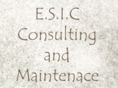 E.s.i.c Consulting And Maintenace