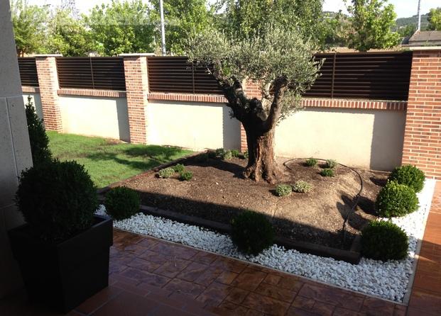 Creaci n de jardines dise o jard n pais vasco ayuda fotos for Creacion de jardines