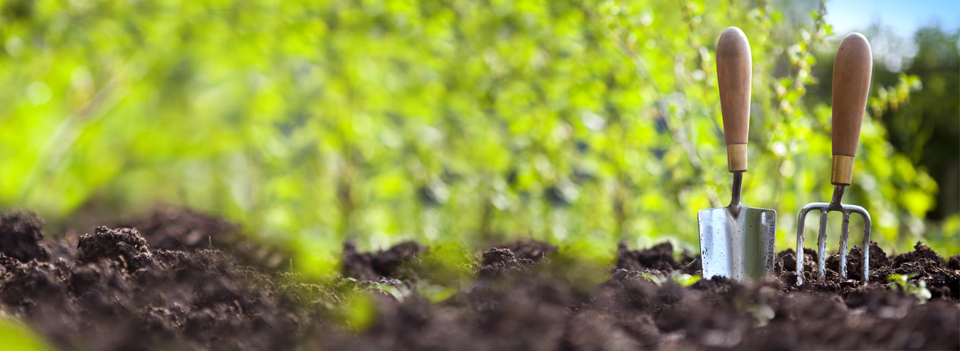 Jardiner a for Empresas de jardineria